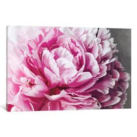 iCanvas 'Peony Blush' by 5by5collective Canvas Print