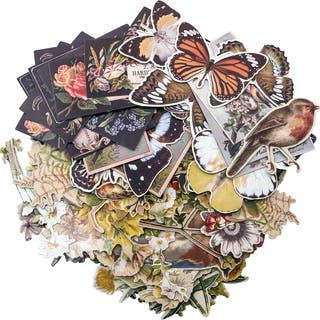 "Idea-Ology Layers Die-Cuts 83/Pkg-Botanical .75""X1"" To 6.5""X2""
