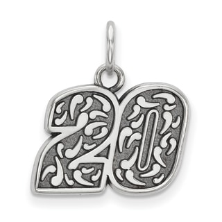 Nascar Necklace Stainless Steel Bali Type 20 Dangle Pendant And Chain