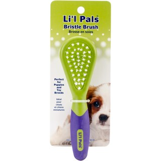 Li'l Pals Dog Bristle Brush