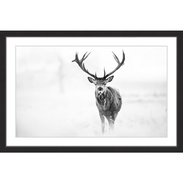 Elk Stare' Framed Painting Print