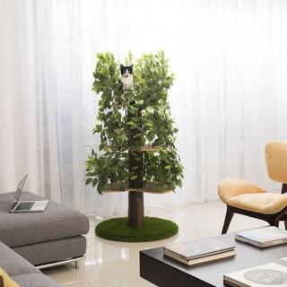 On2 Large Multi-level Cat Tree