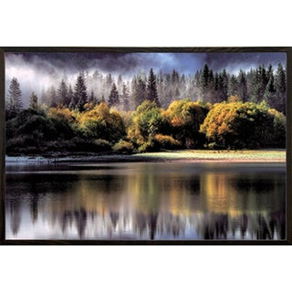 Forest Autumn Lights Poster Print (36-inch x 24-inch) with Walnut Architect Picture Frame