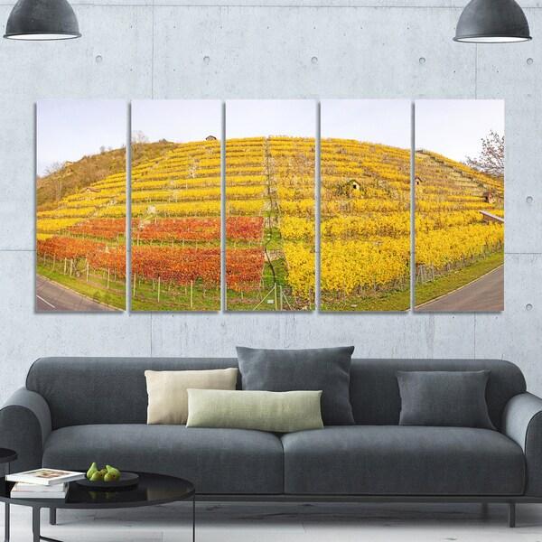 Designart \'Vineyard Panorama in Autumn\' Modern Landscpae Wall Art ...