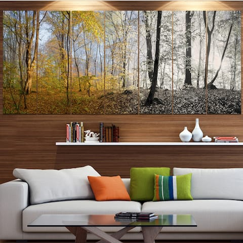 Designart 'Yellow Morning in Forest Panorama' Landscape Wall Artwork Print on Canvas - Yellow