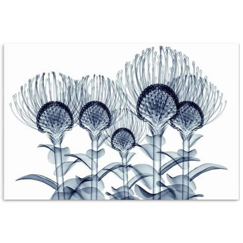 """""""Nodding Pincushions"""" Frameless Free Floating Tempered Glass Panel Graphic Wall Art"""