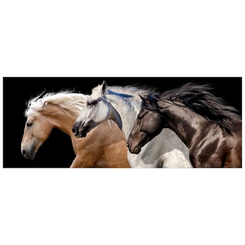 Horses Wall Art on Frameless Free Floating Tempered Glass