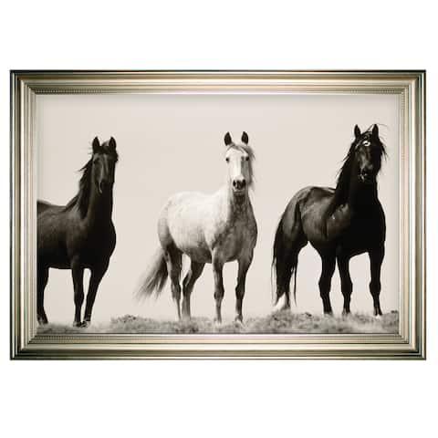 Wild Stallions -Silver Frame