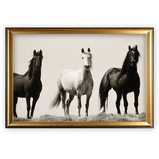 Wild Stallions - Gold Frame