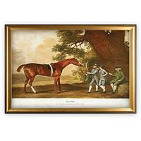 Equine Drawing I - Gold Frame