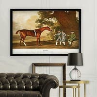 Equine Drawing I - Black Frame