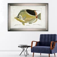 Fish Sketch I -Silver Frame