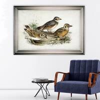 Aviary Sketch XIII -Silver Frame