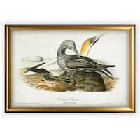 Aviary Sketch XII - Gold Frame