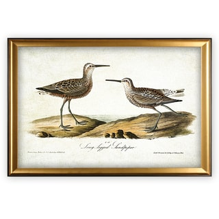 Aviary Sketch III - Gold Frame