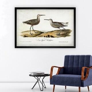 Aviary Sketch III - Black Frame