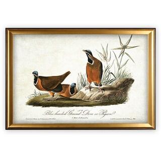 Aviary Sketch II - Gold Frame