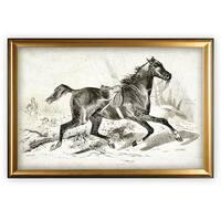 Equine Sketch VIIII - Gold Frame