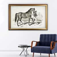 Equine Plate XXI - Gold Frame