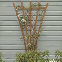 Highwood Eco-Friendly 6ft Traditional Fan Trellis