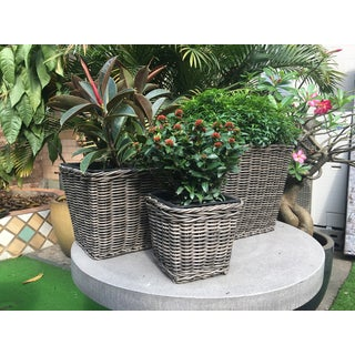 Square Resin Neutral Grey Wicker Planters (Set of 3)
