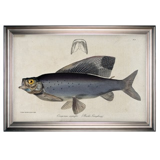 Link to Vintage Fish Study I -Silver Frame Similar Items in Canvas Art