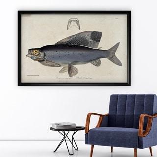 Vintage Fish Study I - Black Frame