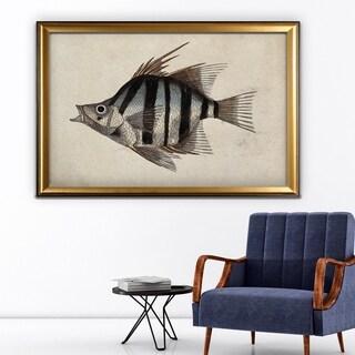 Vintage Fish Study II - Gold Frame