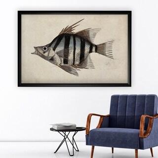 Vintage Fish Study II - Black Frame