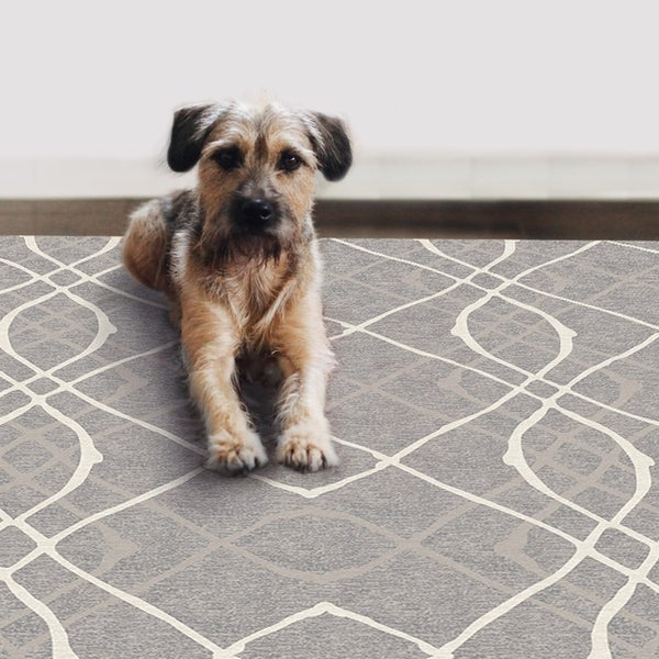 RUGGABLE Washable Indoor/ Outdoor Stain Resistant Pet Area Rug Amara Grey (8' x 10') - 8' x 10'