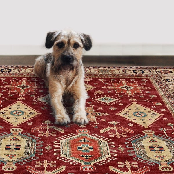 Pet Friendly Rugs Reviews: Shop RUGGABLE Washable Indoor/ Outdoor Stain Resistant Pet