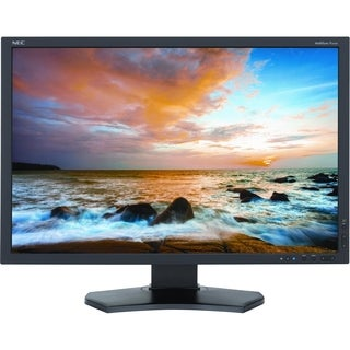 "NEC 24.1"" LED LCD Monitor"
