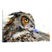 iCanvas 'Owl II' by Dean Crouser Canvas Print