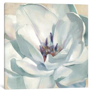 iCanvas Iridescent Bloom II by Carol Robinson Canvas Print