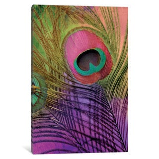 iCanvas 'Peacock Candy III' by Color Bakery Canvas Print