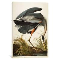 iCanvas Great Blue Heron  by John James Audubon Canvas Print