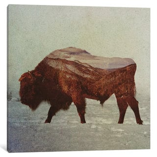 iCanvas 'Bison II' by Andreas Lie Canvas Print