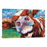 iCanvas 'Curious Cow I' by Carolee Vitaletti Canvas Print