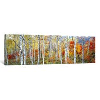 iCanvas 'Fall Trees, Shinhodaka, Gifu, Japan' by Panoramic Images Canvas Print