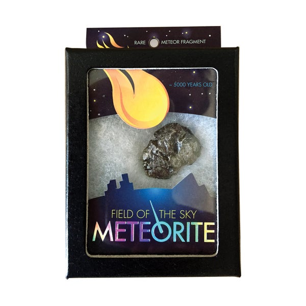 Field of the Sky Meteorite