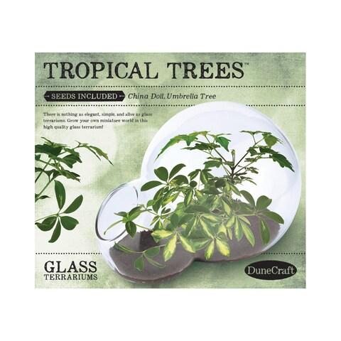 Double Bubble Glass Terrarium - Tropical Trees - Green