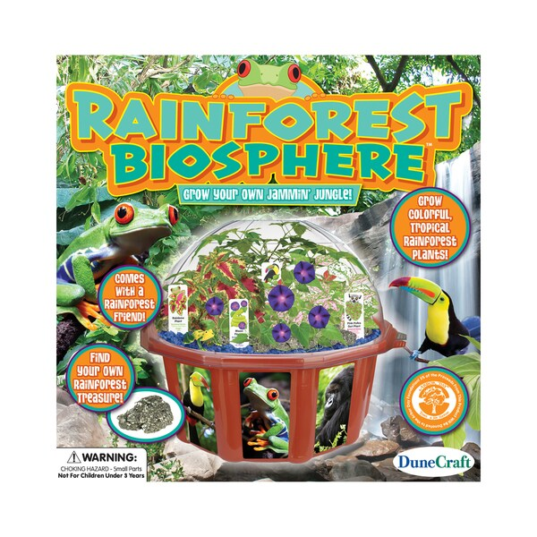 Dome Terrarium - Rainforest Biosphere