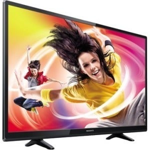"""Magnavox 50ME336V 50"""" 1080p LED-LCD TV - 16:9 - HDTV"""