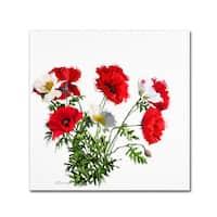 The Macneil Studio 'Poppies' Canvas Art