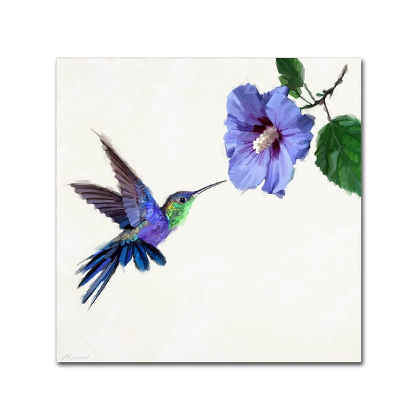 The Macneil Studio 'Humming Bird' Canvas Art