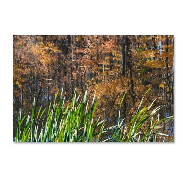 Kurt Shaffer 'November's Colors at Pond's Edge' Canvas Art