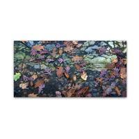 Kurt Shaffer 'Autumn Mosaic' Canvas Art