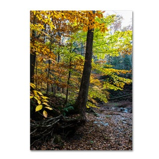 Kurt Shaffer 'Autumn Afternoon' Canvas Art