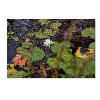 Kurt Shaffer 'September Lotus' Canvas Art