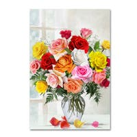 The Macneil Studio 'Roses' Canvas Art